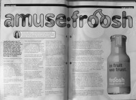 Amuse Froosh: How a small Scandinavian smoothie brand can help to shake up your marketing...